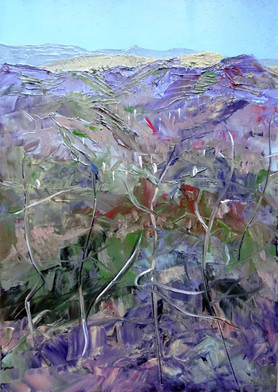Coniston hills