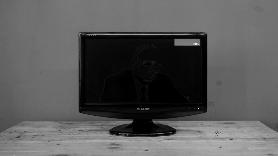 Putin TV for meditation