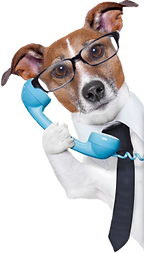 DogAgent.png