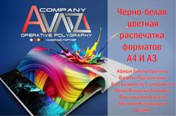 1579420519_41-95