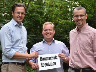 Gemeinderat beschließt Resolution zum Schutz der Bäume