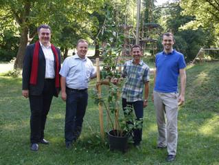 In Kierling entsteht der neueste Naschgarten