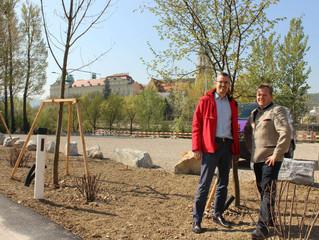 1000 Bäume für Klosterneuburg