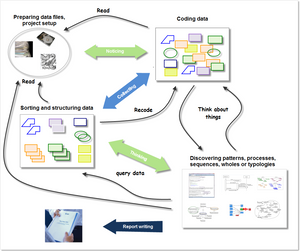 Steps of the NCT process of qualitative data analysis