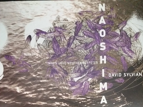 David Sylvian -When Loud Weather Buffeted Naoshima