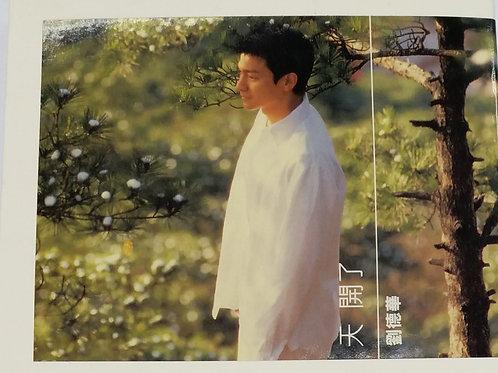 劉德華 - 天開了 (CD+VCD)