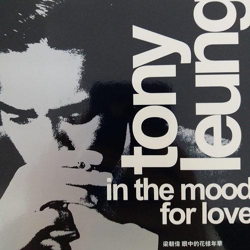 梁朝偉 - 眼中的花樣年華 In The Mood For Love (AVCD)