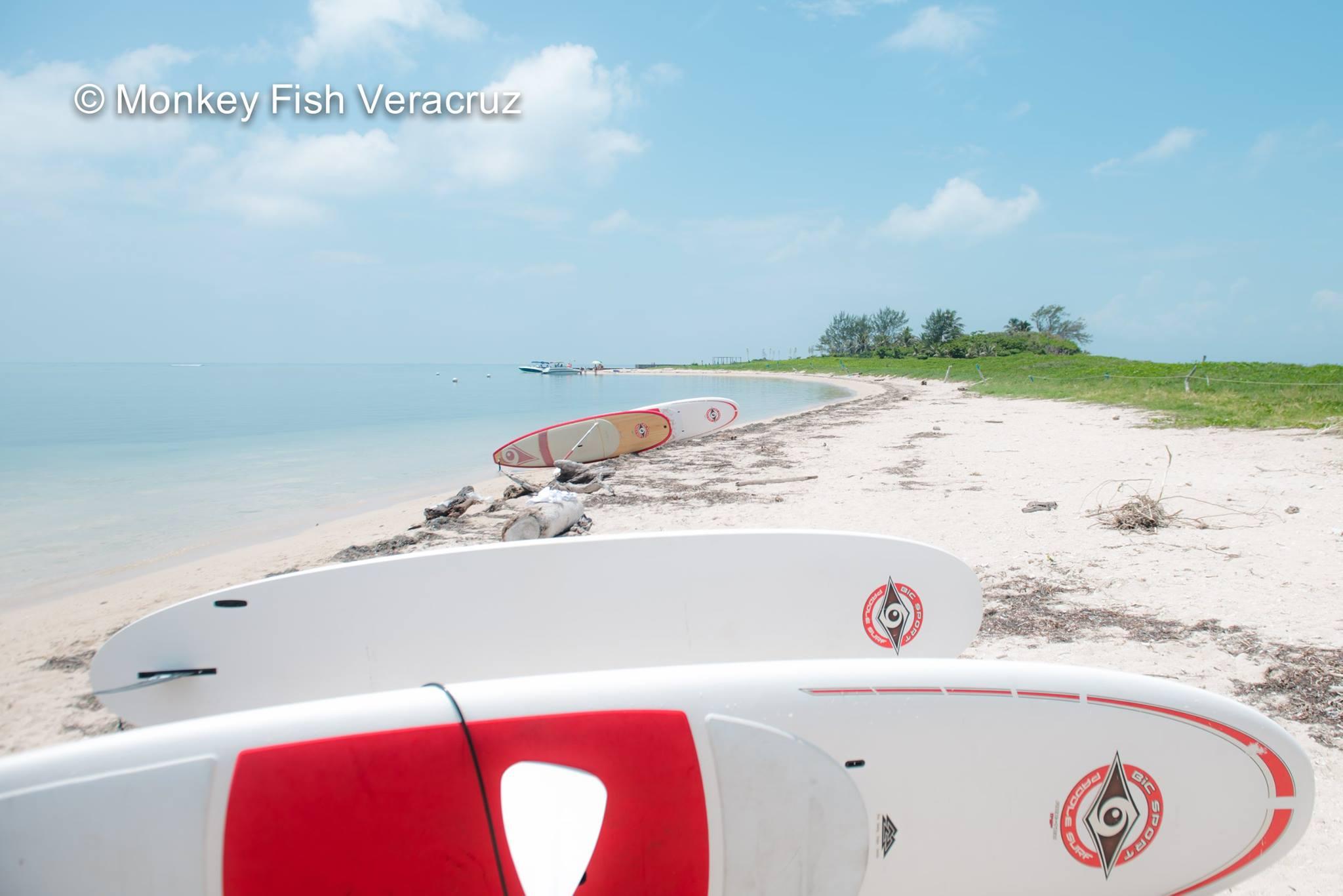 Paddles Isla de Enmedio