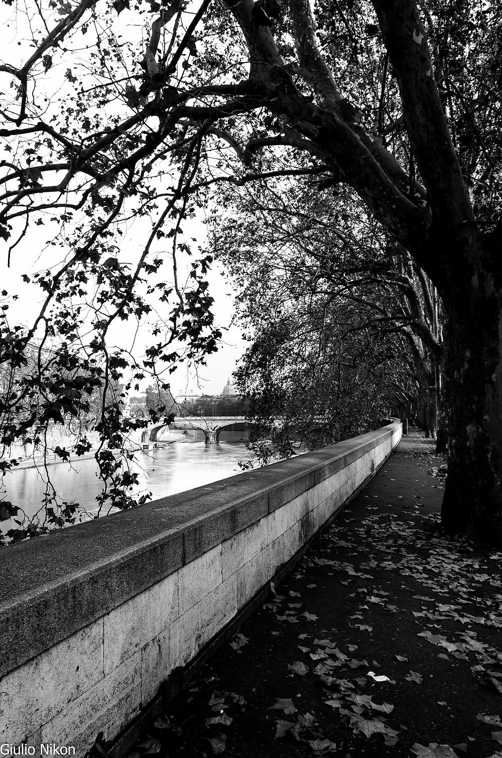 Flickr - Giulio_Nikon_NovembreRoma_18 mm_03