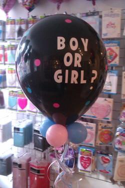 "16"" Gender Reveal"