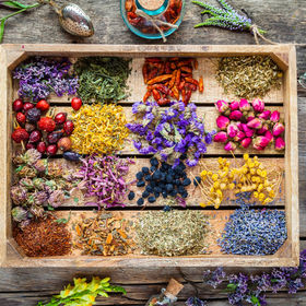 Healing herbs in wooden box on table, he