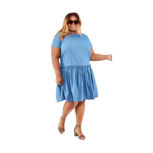 Ashley Stewart Denim Ruffle Dress
