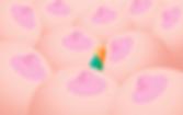 mcrd-yigit-03-pink boobs.png