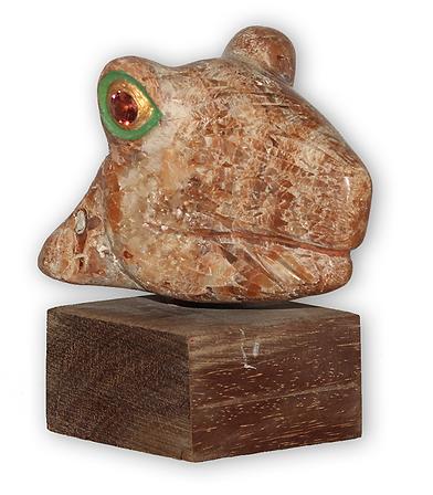 Y.Kale-frog-750.png