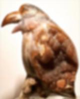 Y.Kale-brown kuş-900.png