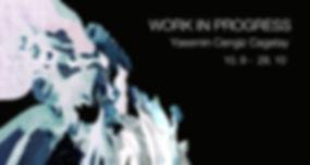 WIPslider-WIX.jpg
