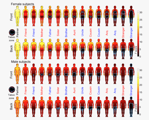 image of many human figures with varying degrees of their body covered in warm to cool colors to represent frequently contacted areas