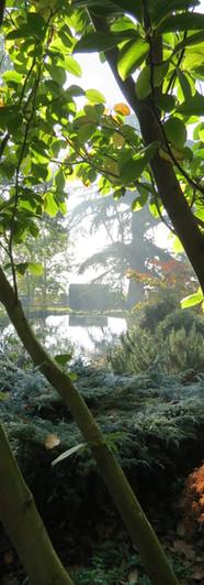 The main pond.