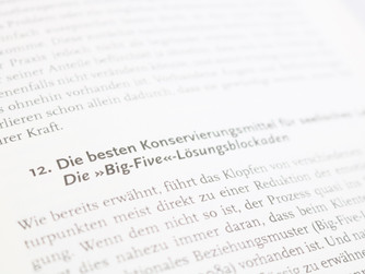 Die «Big-Five» Lösungsblockaden