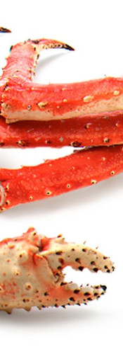 RED King Crab Leg & Claw