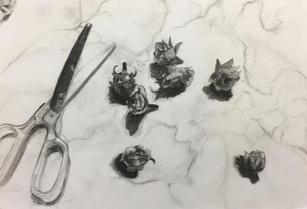 Eleanor Brown_Drawing