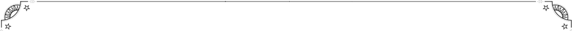 border_bottom (1).png