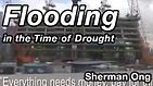 flooding AMI 570 thumb.png