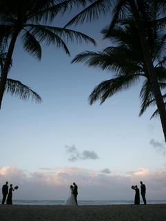 Kewarra Beach Resort Weddings 20.jpg