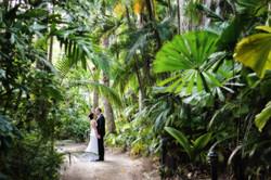 Kewarra Beach Resort Weddings 15