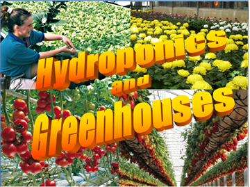 I'm launching my Hydroponics and Greenhouse Master Course on 10 September.  Kindly visit my webs