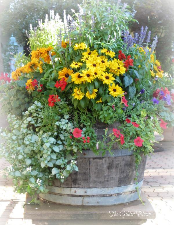 Summer 2021 Flower Pots