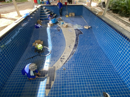 Working on a Dolphin.