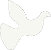 Dove (3).png