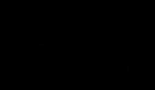 Calico Jack Final Logo.png