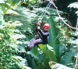 Zipline in a breathtaking rainforest