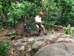 Experience of rainforest rappelling!