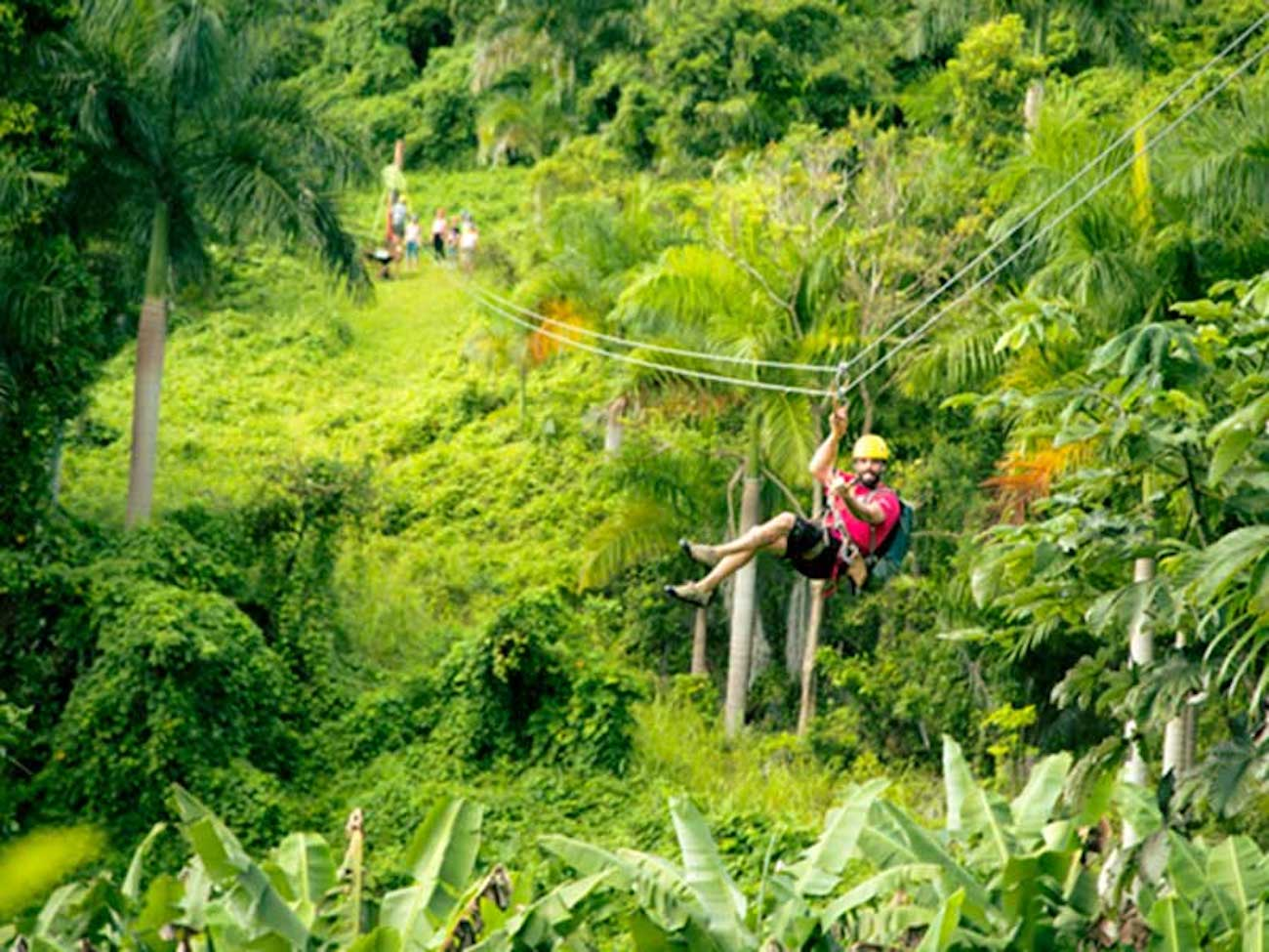Ziplining in the magical rainforest