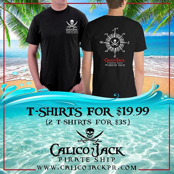 nice beach palms tshirts.jpg