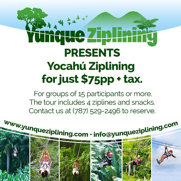 Yocahu Zip Ad 2.jpg