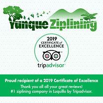 TA YZ Certificate 2019.jpg