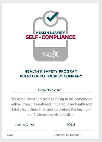 Auto Certificate - Health  Safety Progra