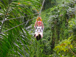 Our rainforest ziplines are great!!