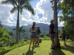 Enjoy alluring views of El Yunque