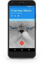 Android call screen.png