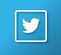 twitter-logo-design_1035-8934.jpg