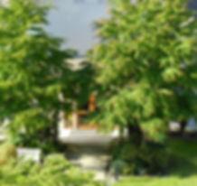 CCCR Spring (2).JPG