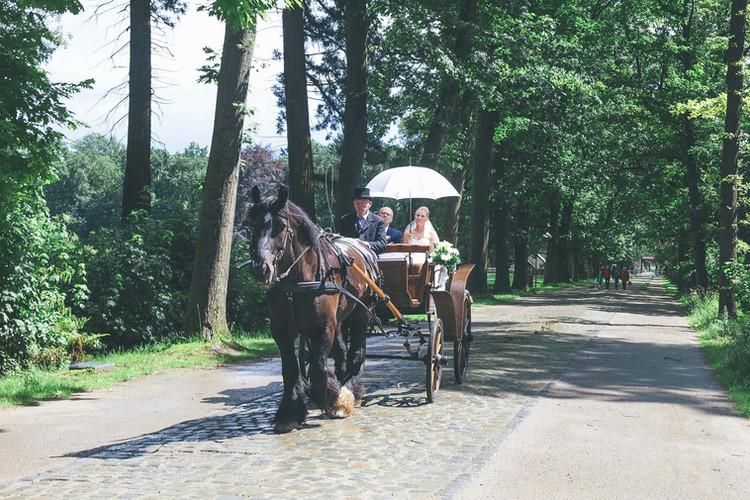 H58_Openluchtmuseum paardenkoets.jpg