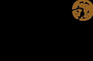 Kachet Kapsule_Logo2+icon_black.png