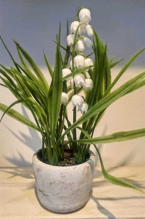 Gisela Graham Faux Artificial Potted White Flowers Lily of the Valley etc