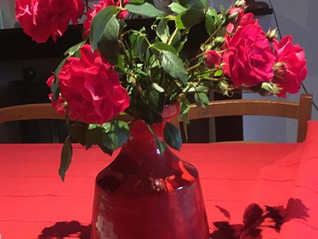 Les rosiers de La Cazotte